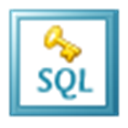 Kernel for SQL Password Recovery