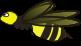 Nsp / Tumbi