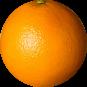 OrangeWebsite