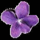 Violet UML Editor